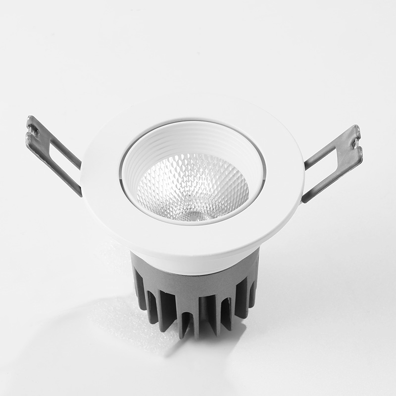 5 CCT adjustable downlight